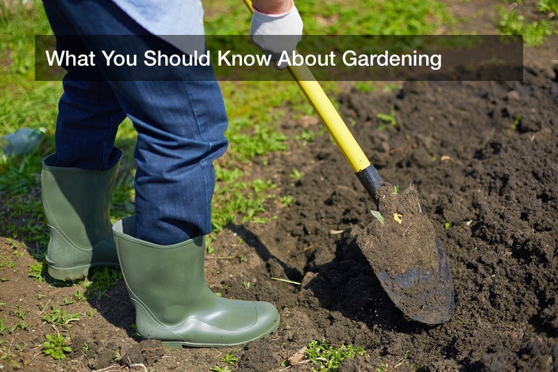 What You Should Know About Gardening